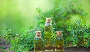 Olejek pichtowy – charakterystyka, właściwości, zastosowanie w kosmetyce, cena