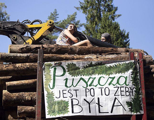 Blokada wywozu drewna w Puszczy Białowieskiej