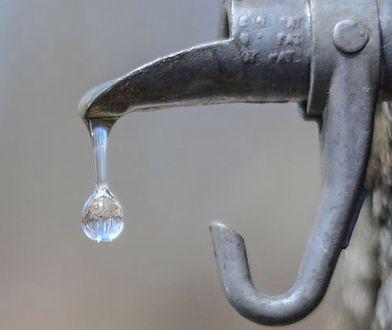 Woda klonowa. Naturalny elektrolit z dużą dawką potasu