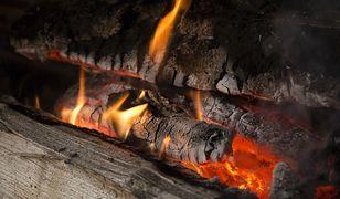 Wybierz odpowiednie drewno, a zaoszczędzisz sporą kwotę