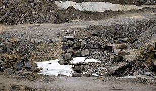 Zanieczyszczone gleby w Warszawie. Czy jest ich coraz więcej?