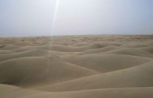 Makabryczne odkrycie na pustyni w Nigrze