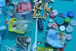 Mikroplastik. Koń trojański toksycznych metali