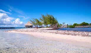 Karaiby – zostań właścicielem rajskiej wyspy i sąsiadem Leonardo DiCaprio