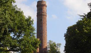 Wieża widokowa na Górze Chełmskiej