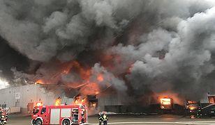 W akcji gaśniczej bierze udział kilkudziesięciu strażaków