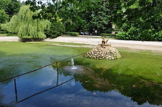 Spuścili wodę ze stawu w Ogrodzie Saskim