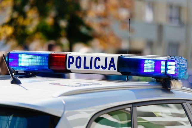Warszawa. Kobieta została napadnięta w Lesie Kabackim