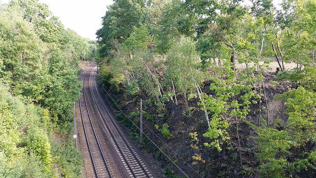 W Czeladzi ma powstać stacja kolejowa