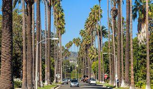 Beverly Hills to pozycja obowiązkowa podczas wizyty w LA