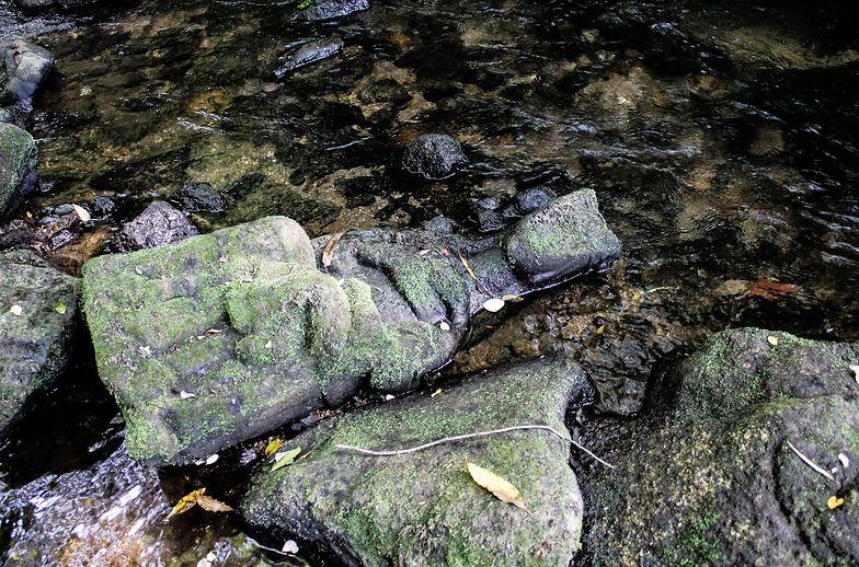 Potknął się na rybach o kamień. Niezwykłe XIV-wieczne odkrycie w Hiszpanii