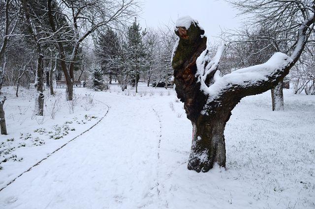 Atak zimy w Polsce. Nawet -10 stopni i śnieg - zobacz