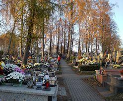 Najwięcej zgonów od II wojny światowej. Mimo to branża pogrzebowa nie zarabia kroci