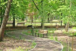 Sosnowiec. Park zmienił oblicze, otwarcie w Dzień Matki