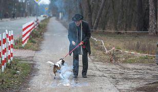 Korwin-Mikke rzucał petardami tuż obok psa