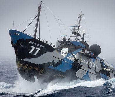 Sea Shepherd: ekologiczny zamordyzm. Koniec proszenia, czas na walkę