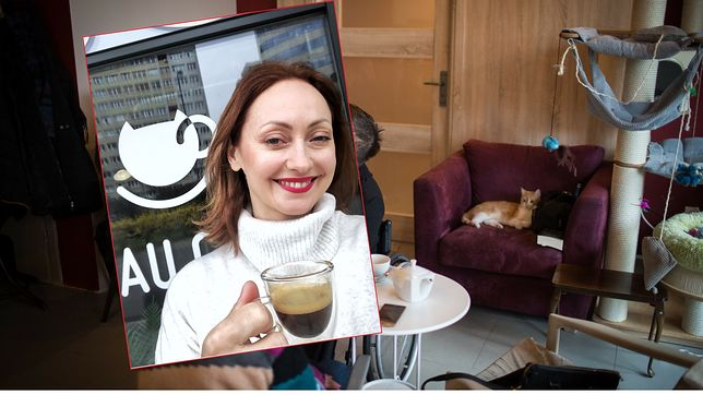 Anna Pawlicka jest właścicielką pierwszej kawiarni z kotami w stolicy