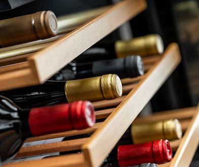 Obowiązkowe urządzenia w kuchni konesera. Chłodziarki do wina Amica