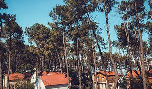 Domki letniskowe nad morzem - sposób na udane wczasy