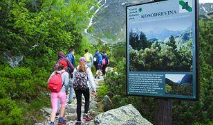 Szczyt sezonu w górach. Miejsc brakuje także po słowackiej stronie Tatr