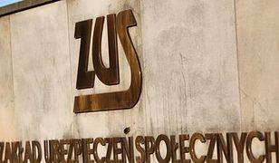Gigantyczna dziura w systemach ZUS. Zarobki Polaków były dostępne dla każdego