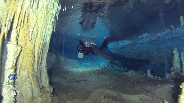 Podziemne jaskinie u wybrzeży Meksyku.