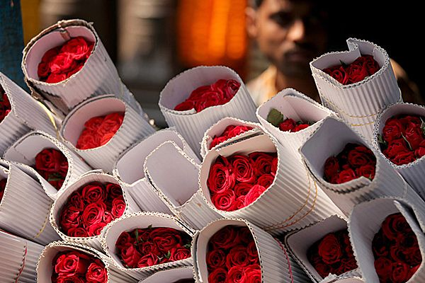 450 milionów róż na walentynki