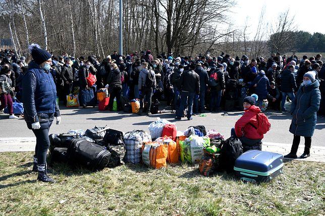 Koronawirus w Polsce i na świecie. Koszmar na granicy