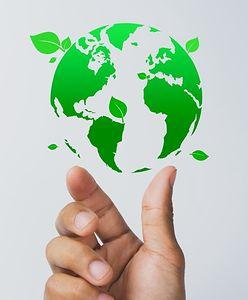 Biznes w służbie ekologii. Poznaj narzędzia, dzięki którym Twój e-commerce zarabia i wspiera eko rozwiązania