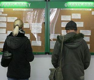 Problem bezrobocia w Polsce dotyczy 21 proc. gospodarstw domowych