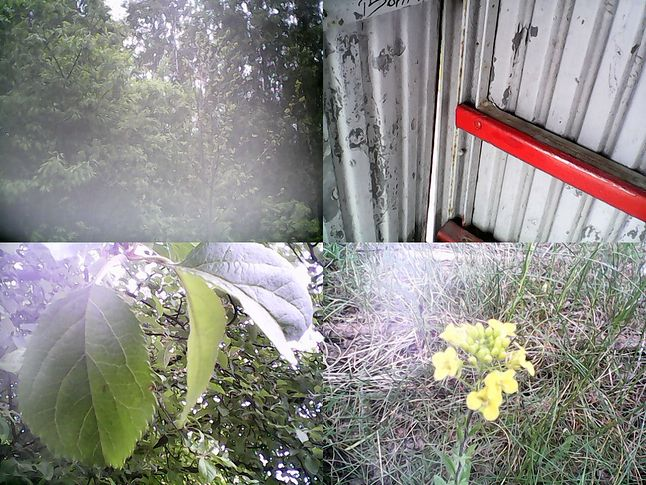 4 przykładowe zdjęcia z aparatu 0,3 MP (1:1)