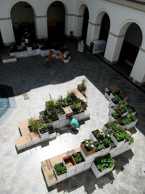 Wyprzedaż roślin na dziedzińcu Zamku Ujazdowskiego