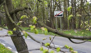 Ponad 200 miejsc w Polsce zmieni nazwę. Teodorów nie będzie już Wielki