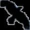 Data Crow icon