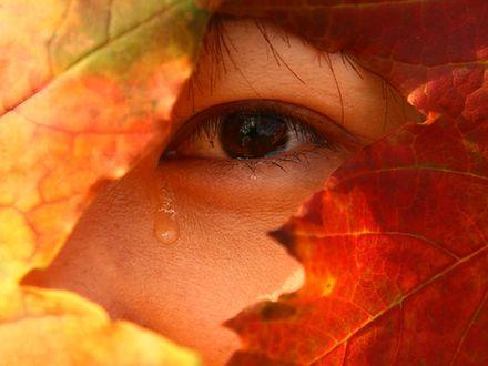 Nie wstydź się łez
