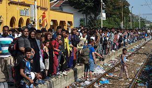 Imigranci przybyli do Europy