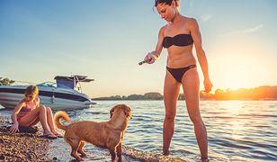 Pies i dziecko na plaży? To zapowiedź problemów.