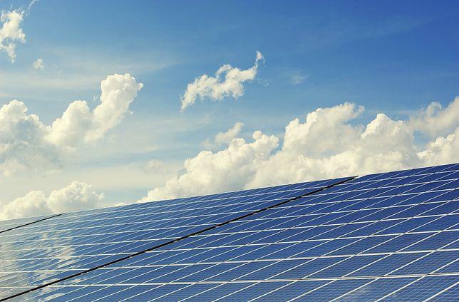Największa fabryka energii ze słońca w Polsce. 200 hektarów paneli da energię dla miasta