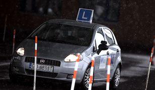 Prawo jazdy za łapówkę: płacili nawet 10 tys. złotych