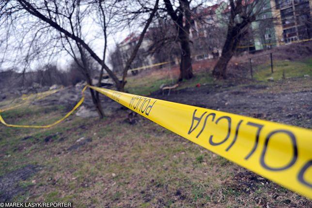 Nastolatka trafiła na ludzkie szczątki podczas spaceru z psem (zdjęcie poglądowe)