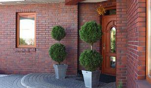 Klinkierowa elewacja. Zasady wykonania elewacji domu z cegły klinkierowej