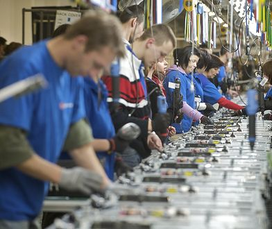 Rynek pracy jest odporny na spowolnienie gospodarcze.