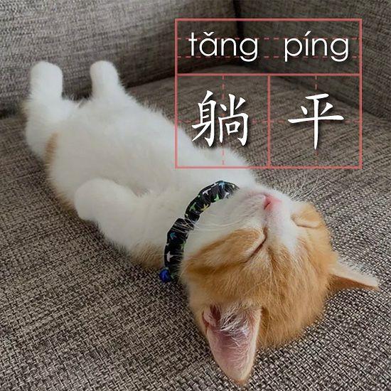 Symbolem Tang Ping stały się zwierzęta leżące na wznak