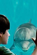Box Office USA: Amerykanie polubili delfina