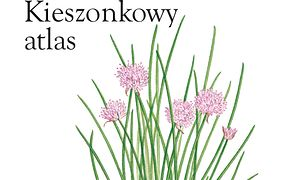 Zioła i rośliny lecznicze. Kieszonkowy atlas