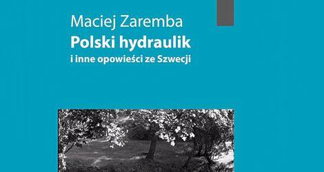 Polski hydraulik i inne opowieści ze Szwecji - Maciej Zaremba