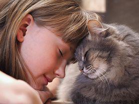 Naukowcy: koty przyczyną zaburzeń psychicznych. Alarmujące wyniki badań