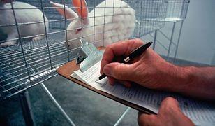 W całym 2018 roku w Polsce do badań naukowych wykorzystanych zostało ponad 150 tys. zwierząt.