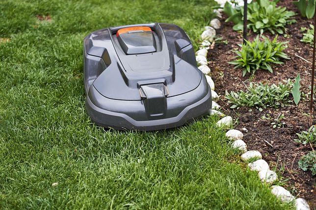 Robot koszący wykona za ciebie prace ogrodowe