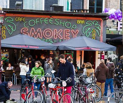 Coffee shop w Amsterdamie